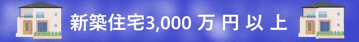 新築戸建『3,000万円以上』